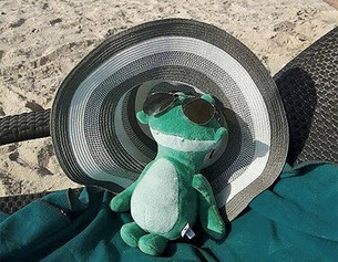 Julius en la playa