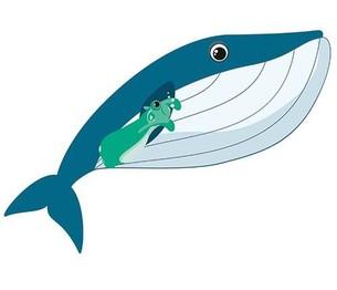 Juzo strijkplaatje Julius Whale
