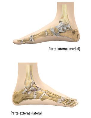 Vistas del pie desde dos lados
