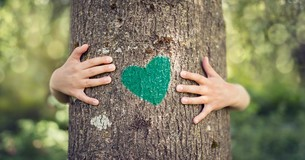 Tree with green heart