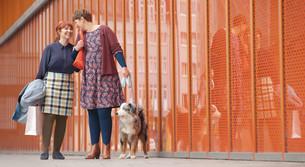 Freundinnen spazieren mit einem Hund