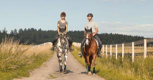 Konie ze stabilizatorami miękkimi EquiCrown