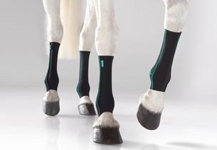 Hest med hestebandager