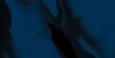 Standardfarbe Blaubeere