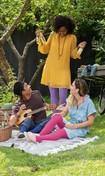 Friends having a picnic.