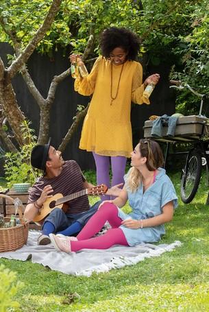 Friends are having a picnic