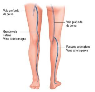 O sistema venoso da perna
